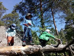 Children's Forest – a nature playground in Helsinki