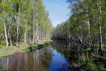 Mätäjoki Talin kohdalla, toukokuussa 2018