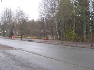 2017 poistettujen puiden istutuskuopat peitettiin asvaltilla