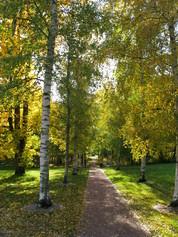 Historiallinen polku, jonka päässä Villa Annebergin perustamiskivi