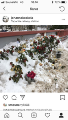 Radan ylittävä silta tämän vuoden ystävänpäivänä, viikko sen jälkeen, kun eräs nuori oli tehnyt itsemurhan hyppäämällä kaiteen yli junan alle.