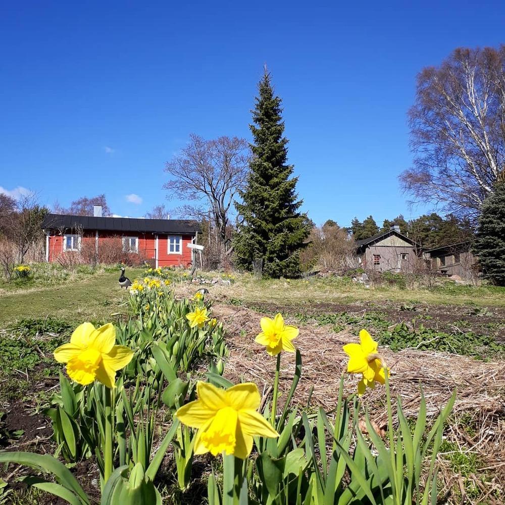 Syötävän Puiston viljelytoiminnan kehittäminen