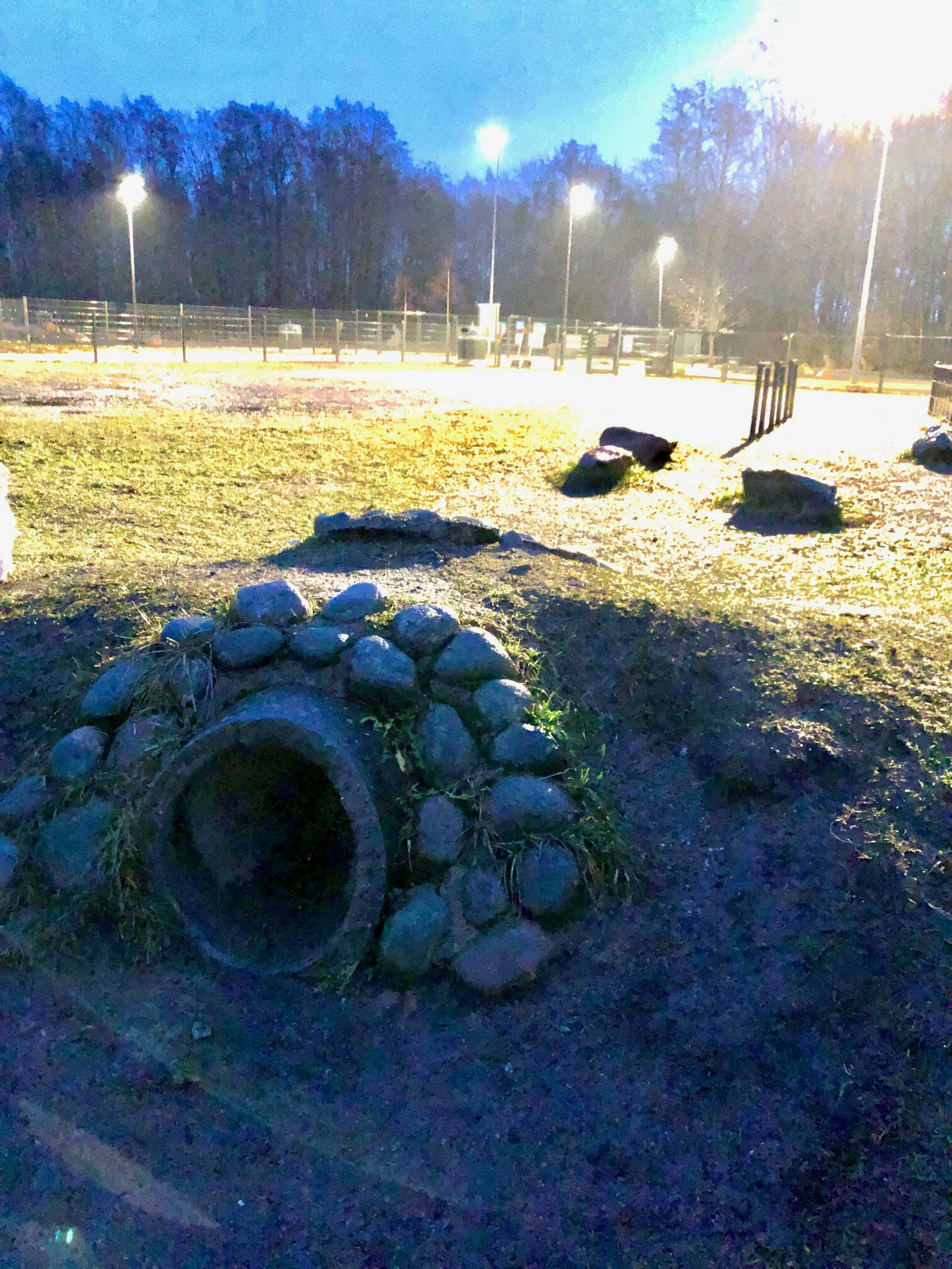 Pukinmäen ja Malmin koirapuistojen kehittäminen