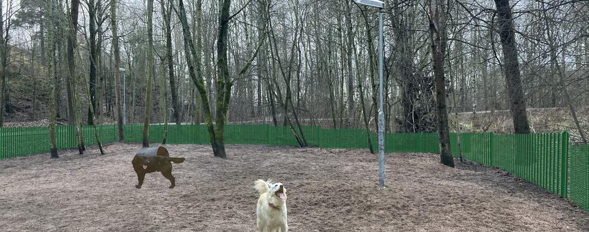 Kumpulanlaakson koira-aitauksen kunnostus