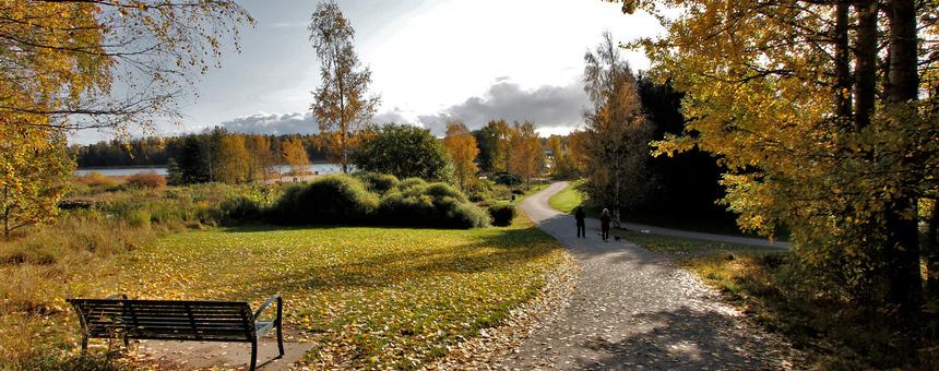 Juorumäelle,  sen palsta-alueelle, Kappelin ympäristöön sekä  Puotilan Kartanon puistoon valaistus - lisää aikaa ulkoilulle kaikkina vuodenaikoina