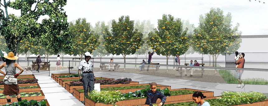 Community Garden (https://www.cmgsite.com/project/west-oakland-urban-farm-and-park/4-dd-community-garden/)