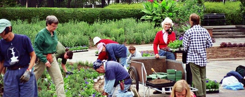 Community Garden (http://thegardenerseye.blogspot.com/2010/03/best-gardening-day-ever.html)