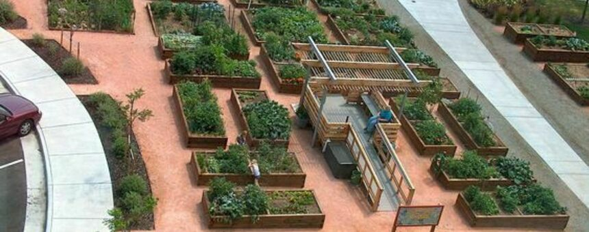 Community Garden (https://fi.pinterest.com/pin/107242034849117808/)