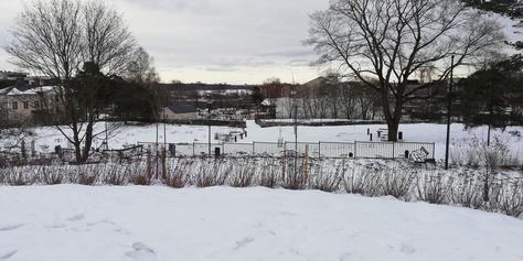 Hermanninpuisto odottaa liikuntamahdollisuuksia nuorille