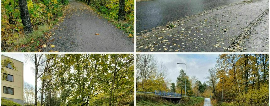 More exercise for everyone on safe paths in Pihlaisto and Viikinmäki