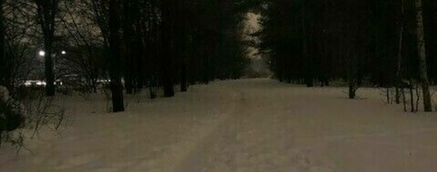 Increasing lighting along the pedestrian paths in the Kartanonhaka and Mätäoja park area