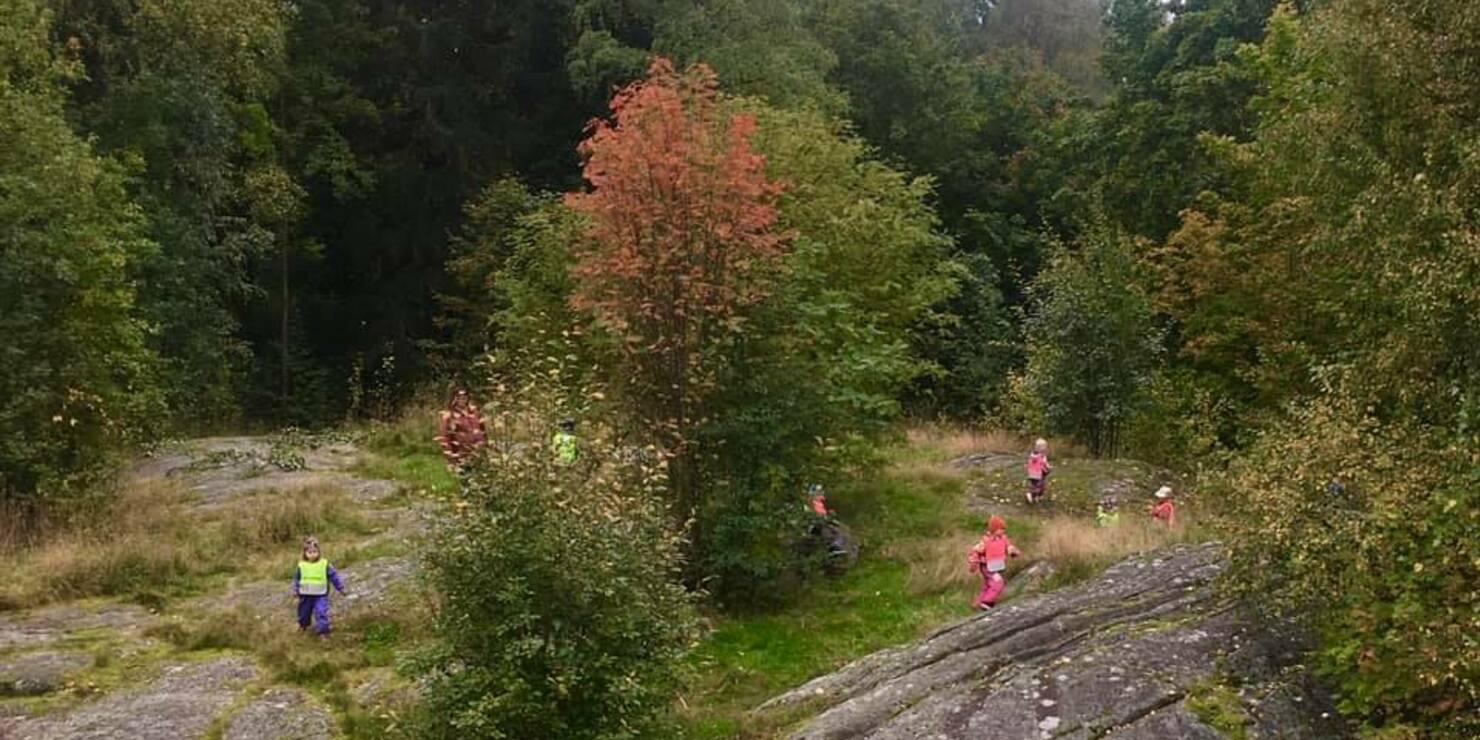 Lapset lähiluontoretkellä kalliolla