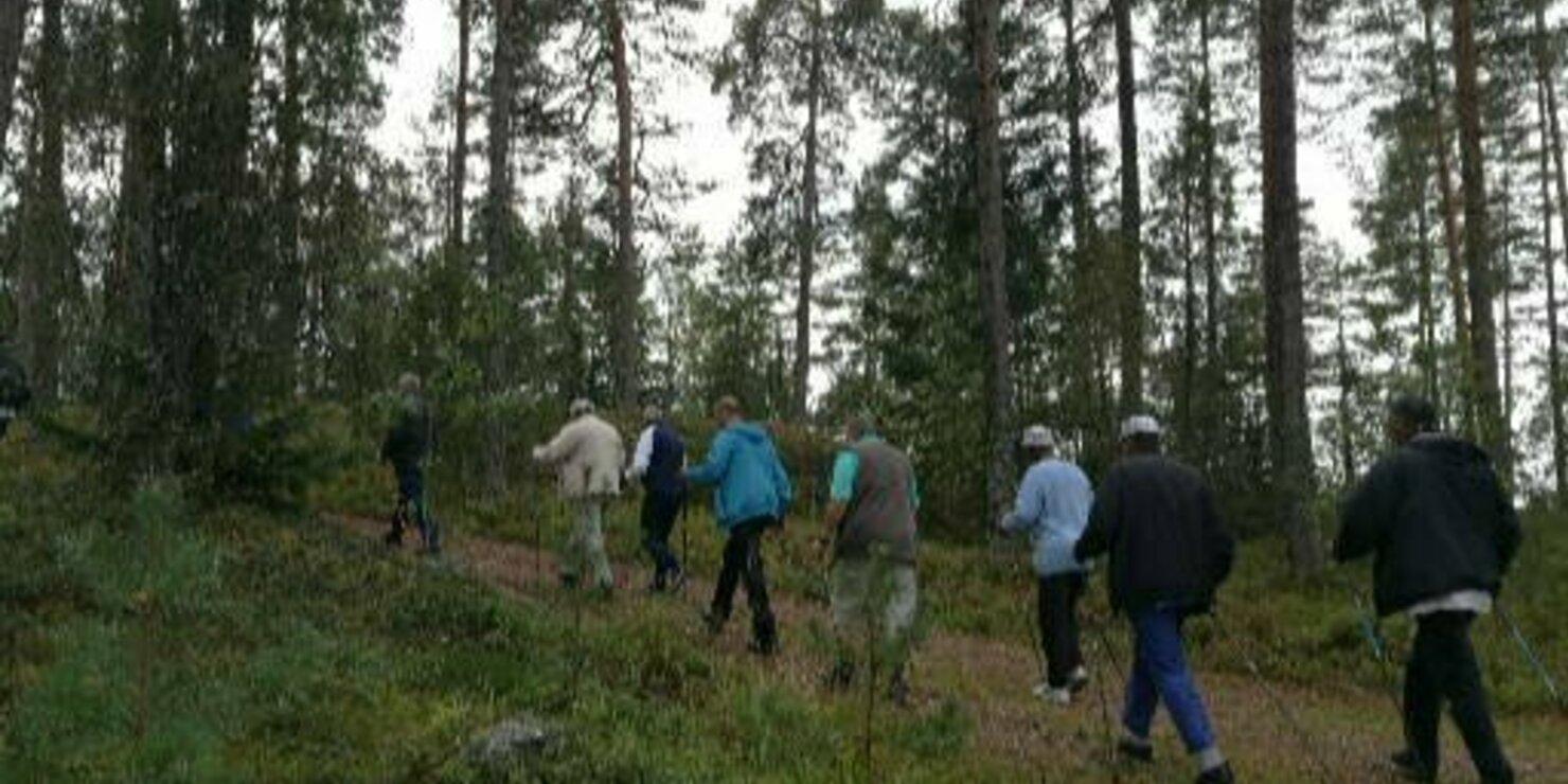 Sauvakävelyä metsässä
