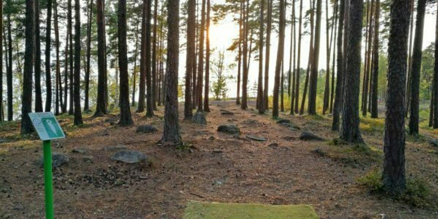 Esimerkki miltä frisbeegolf väylä näyttäisi metsässä